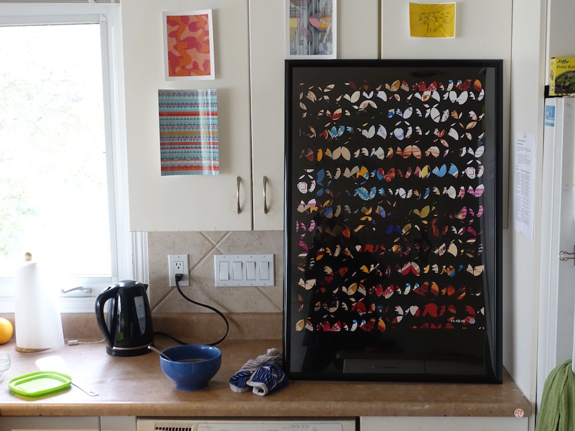 In the kitchen with the butterfly collection
