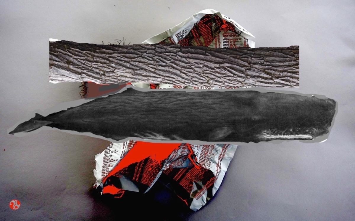 sperm whale log sandwich togo!