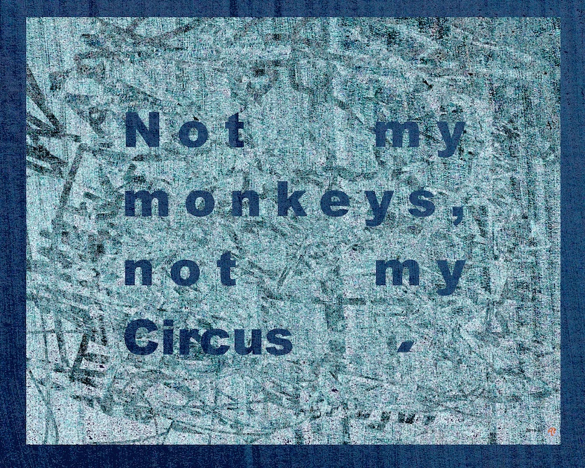 Not my monkeys, not my Circus